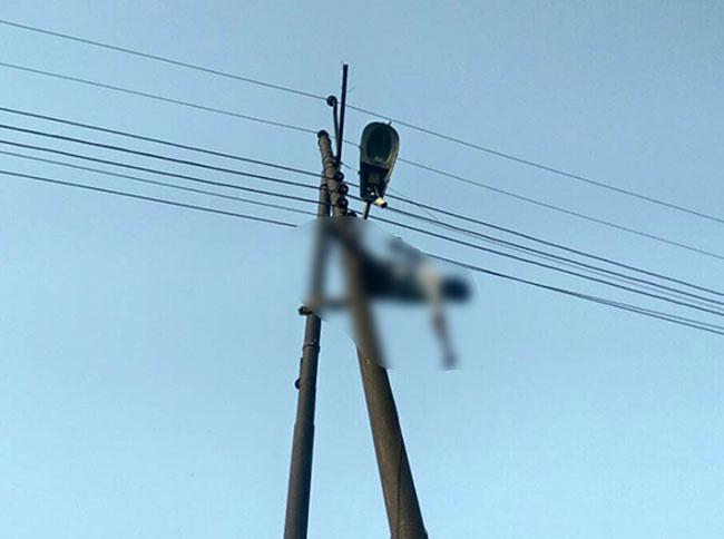बिजली के खम्भे से लटका हुआ शव
