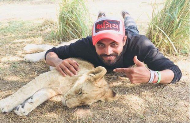 शेर के साथ मस्ती करते रविंद्र जडेजा
