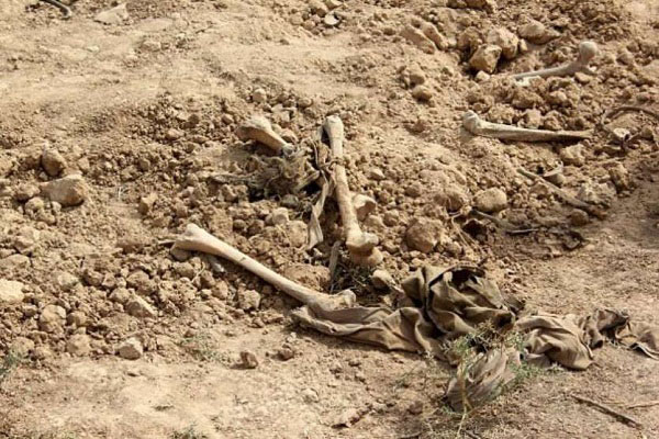 कब्र की खुदाई में निकाले गये शव (सांकेतिक तस्वीर)