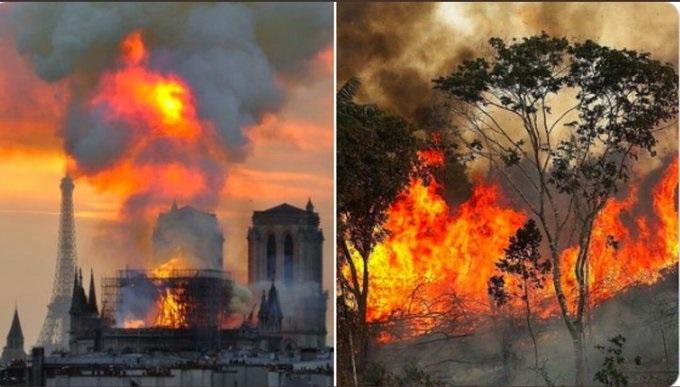 आग में जलता अमेजन जंगल