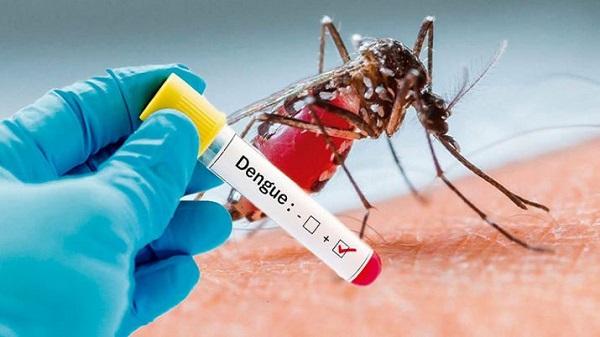 डेंगू से बरतें सावधानी