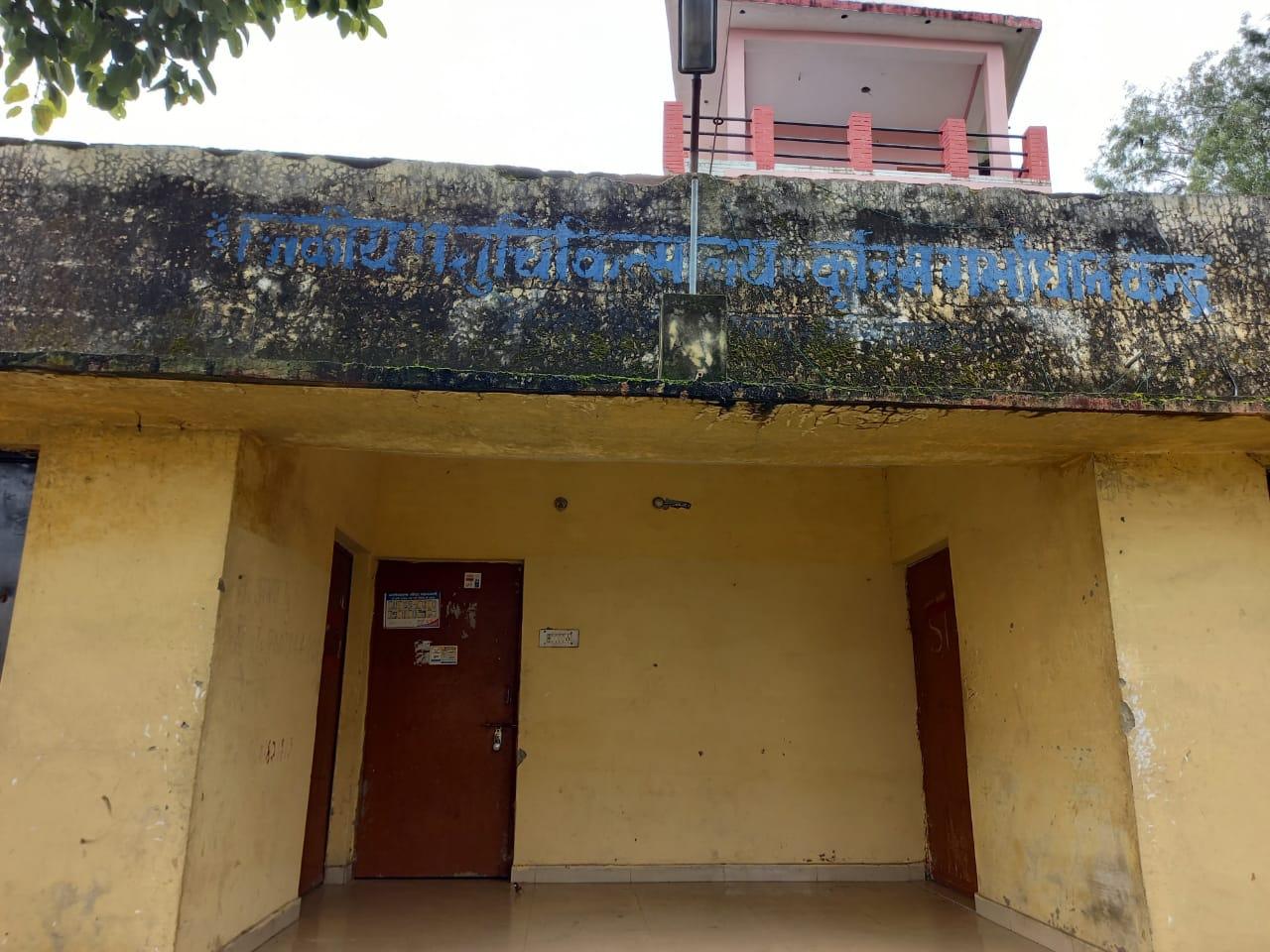 कोल्हुई पशु अस्पताल