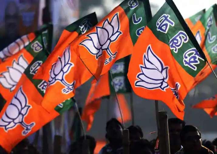 पंचायत चुनाव के लिये भी व्यापक तैयारियों में जुटी भाजपा