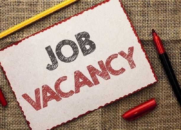 सरकारी नौकरी का सुनहरा मौका (फाइल फोटो)